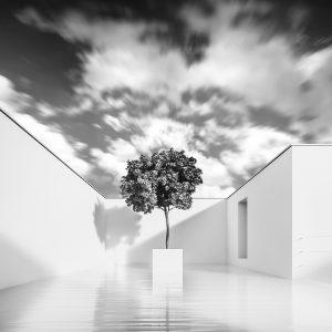 Rendering di architettura moderna, una villa con piscina